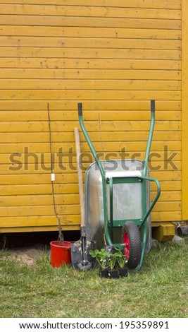 wheelbarrow shovel and young plant.  work in the garden