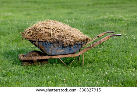 Wheelbarrow with natural cattle manure on the grass - stock photo