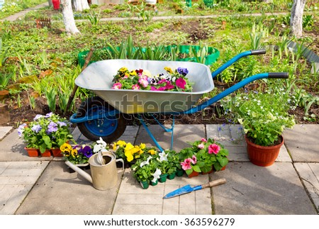 wheelbarrow with potted flowers and tools in the garden