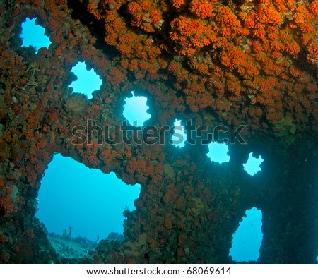 Wheelhouse of an artificial reef encrusted with Red Cup Coral. - stock photo
