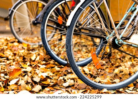 Wheels of bicycles parked in autumn leaves - stock photo