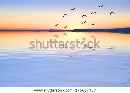 when the sea is calm - stock photo