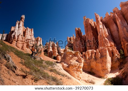 While hoodoos are scattered throughout these areas, nowhere in the world are they as abundant as in the northern section of Bryce Canyon National Park.