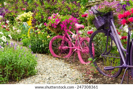 Whimsical garden art bicycles, baskets filled with blooming flowers spilling over into the blooming garden./ Painted Bicycles as Garden Art Planters - stock photo
