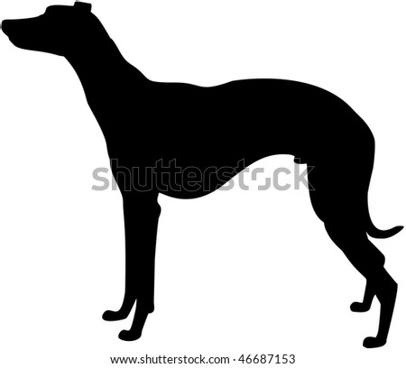 Whippet silhouette - stock photo