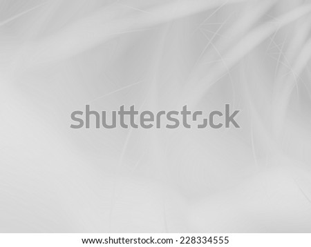 White abstract silky elegant web background - stock photo
