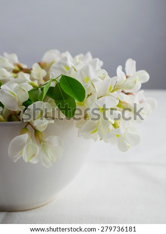 White Acacia Flowers in a white bowl over canvas table - stock photo