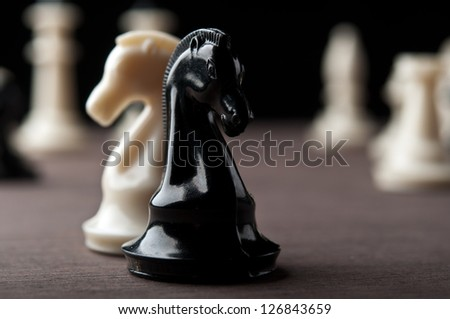white and black chess knights on background - stock photo