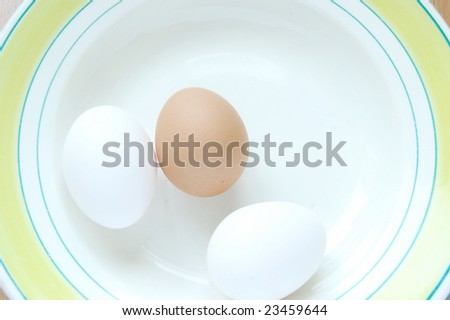 white and brown  eggs on the plate - stock photo