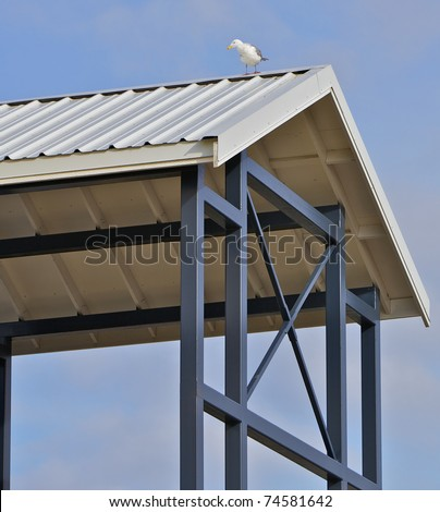 White and gray seagull on the steel roof of a open framed shelter with a blue sky background