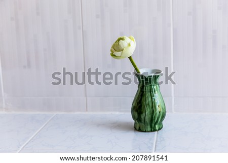 White and green lotus flower in vase - stock photo