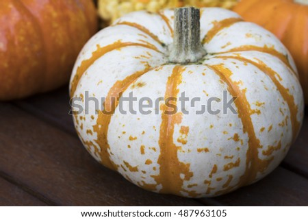 White and orange striped autumn gourd.