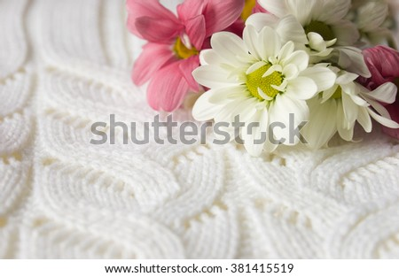 White and red flowers closeup on a white knitted background. Spring postcard can be used as greeting card or background for congratulation - stock photo