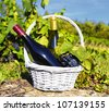 white and red wine in a basket with grapes - stock photo
