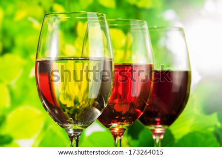 white and red wine in the country - stock photo