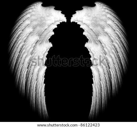 white angel wings - stock photo