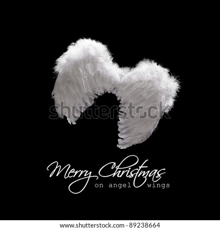 White angel wings lit from above - christmas greeting on black - stock photo