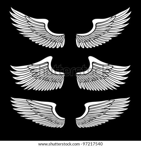 white angel wings set isolated on black - stock photo