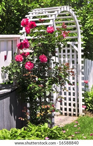 White arbor with red blooming roses in a garden - stock photo