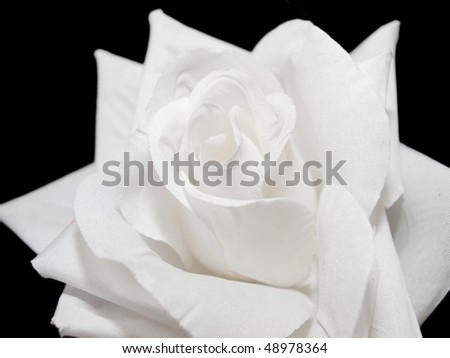 White artificial rose on black background
