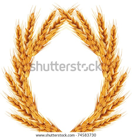 white background with ears of wheat on it - stock photo