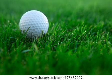 white ball lying on the green grass golf course - stock photo