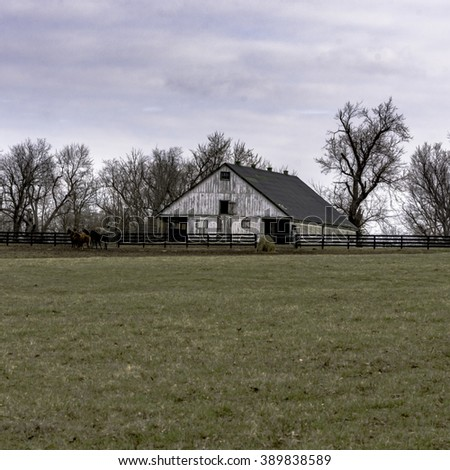 White barn in background with horses in pasture with blank foreground - square format - stock photo