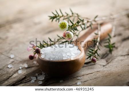 White bath salt on wooden spoon, shallow focus - stock photo