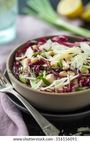White Bean and chicken with radicchio and parmesan cheese salad - stock photo