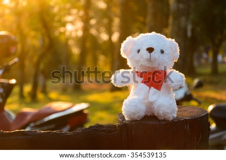 white bear doll with rim light of sunny morning