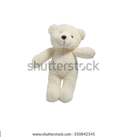 White Bear shaggy white background. - stock photo
