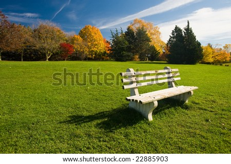 white bench in a park - stock photo