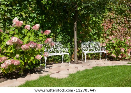 White benches in a summer garden - stock photo