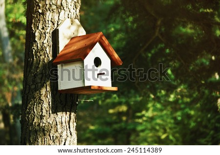 WHite Bird House On The Pine Tree - stock photo