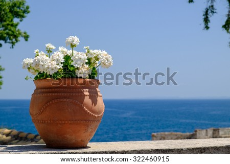 White blooming geranium in a pot on the wall of Corfu Old Fortress with the Ionian sea at the background, Greece. - stock photo