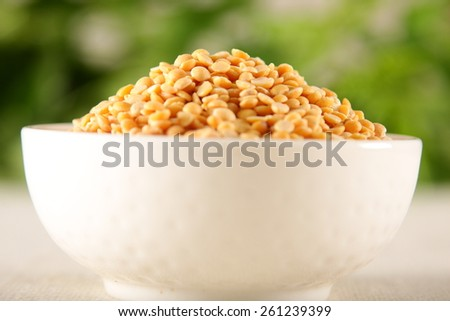 White bowl  of Toor dal, famous Indian legume also called yellow Pigeon peas,Shallow depth of field photograph. - stock photo
