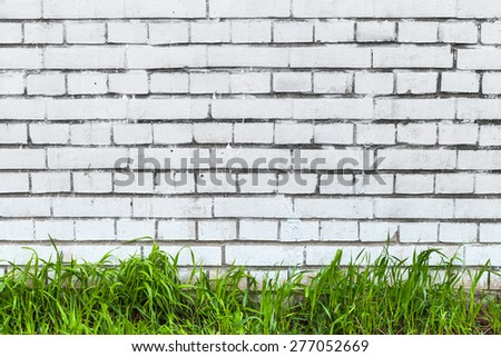 White brick wall and fresh green grass. Abstract urban interior, background photo texture - stock photo