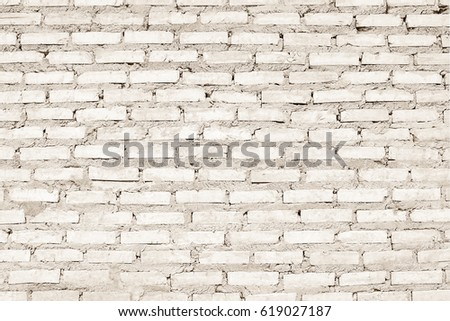 White Brick Wall Texture Interiors Background Gray Cementconcrete Brushed Pastel Painted Outdoor House