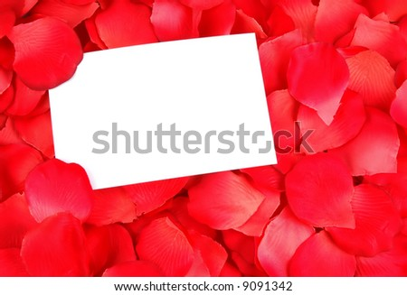 white card on a bed of rose petals