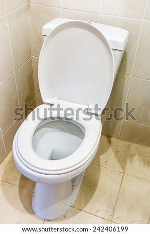 white ceramic toilet in tiled bathroom - stock photo