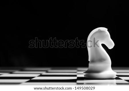 white chess knight on background - stock photo