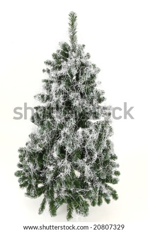 White christmas tree - natural green and white hair