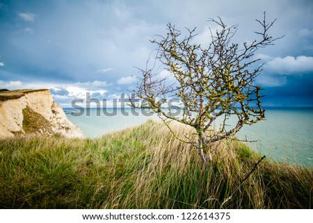 White cliffs of Dover landscape photo