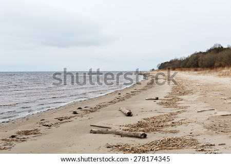 White clouds on the blue sky over country beach - stock photo