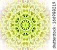 White Concentric Flower Center Macro Close-up. Mandala Kaleidoscopic design - stock photo