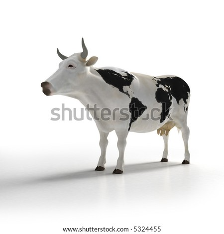 White cow with black patters in the skin shaped like a world map - stock photo