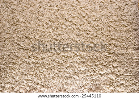 White/Cream colored shag carpet 3 - stock photo