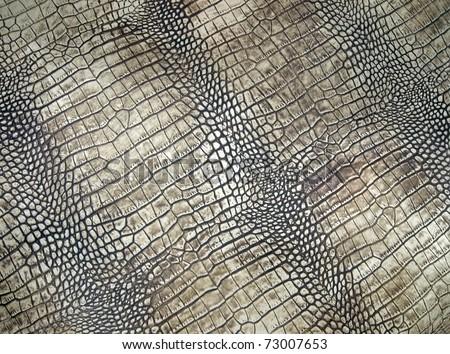 white crocodile skin pattern, abstract danger texture closeup. - stock photo