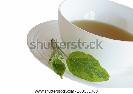 white cup of sage tea with on white background