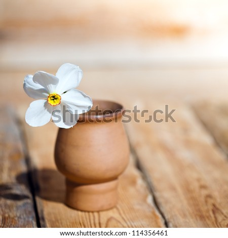 White daffodil in vase on old wooden table - stock photo